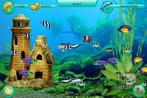 dolphin free games to play